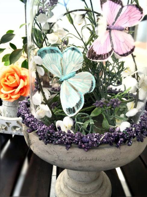 kleine_Schmetterlingswelt3