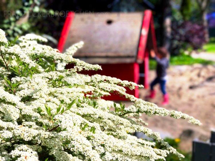 Mein_April_in_Bildern_frauzuckerbroetchen2.jpg