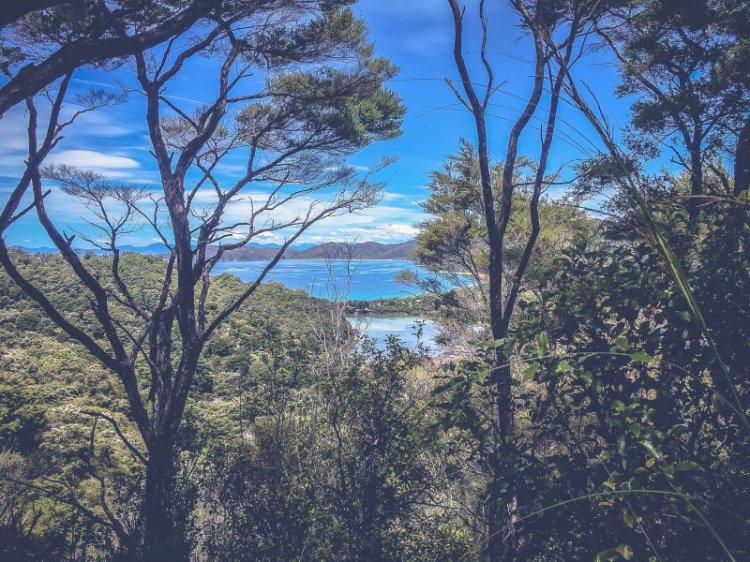 Meine_Radtour_durch_Neuseeland_Wolfgang_H_Blog_Interview8_FrauZuckerbroetchen
