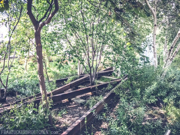 Der High Line Park_Die stillgelegte Hochbahntrasse im Manhattans Westen Bäume und Pflanzen_Frau Zuckerbrötchen