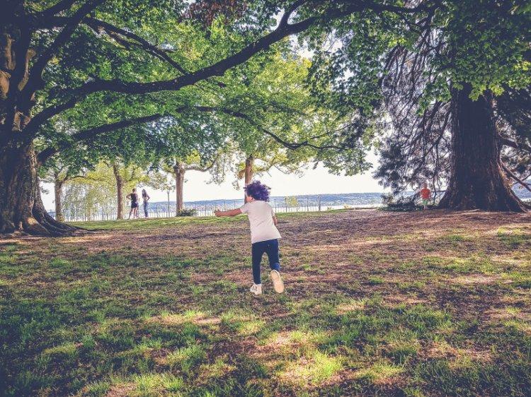 Überlingen_die wunderschöne Stadt am Bodensee_im Park3