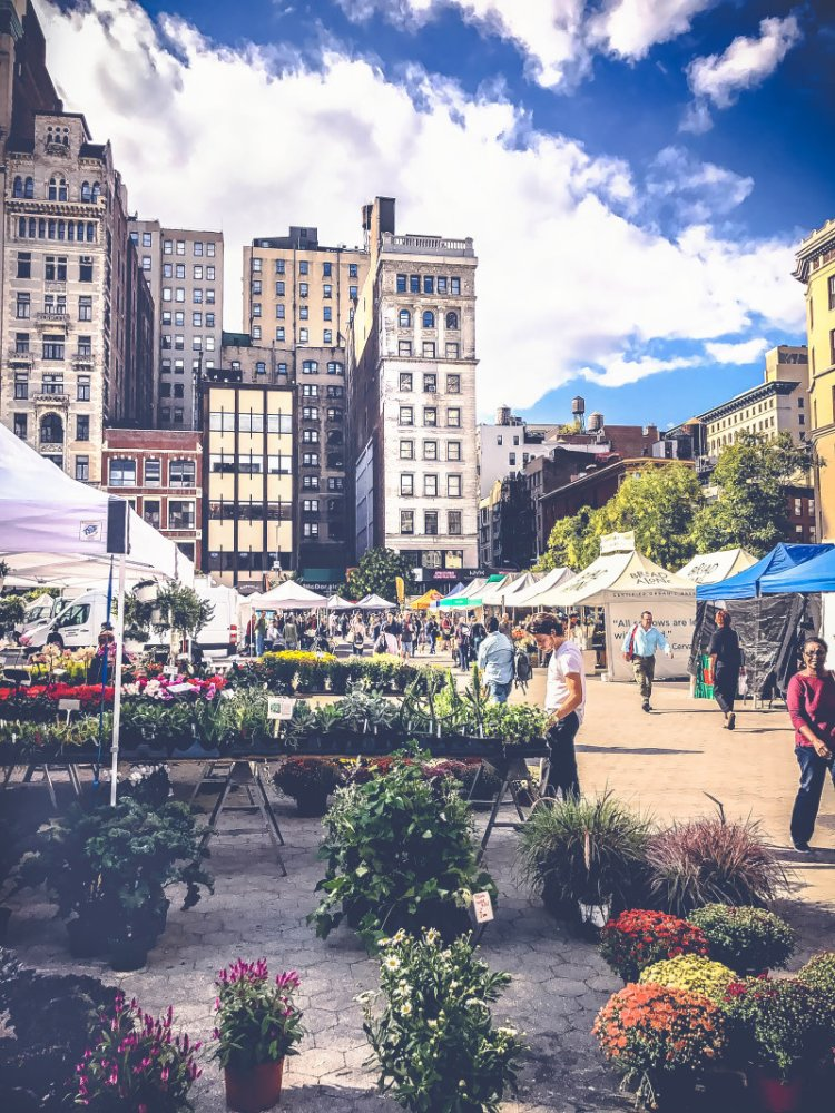 Märkte in New York_ Der Union Square Greenmarket