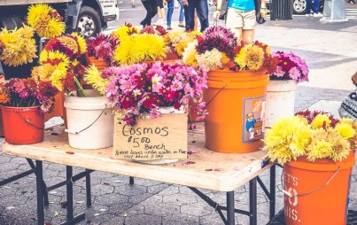 Märkte in New York_ Der Union Square Greenmarket18