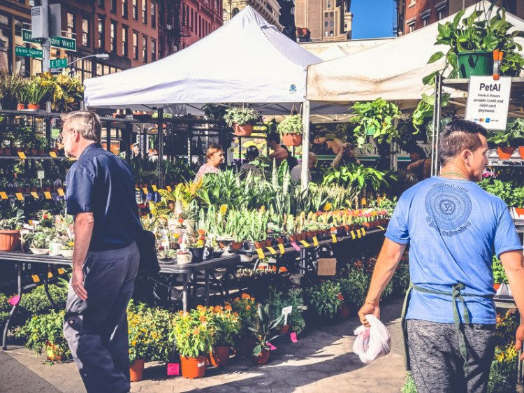 Märkte in New York_ Der Union Square Greenmarket19