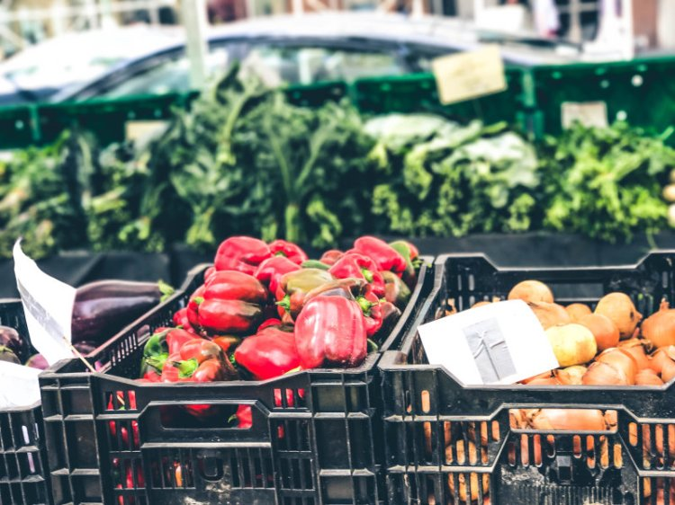 New York Food Markets_City Hall Green Market4
